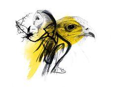 IODICE AW12 - jonny macali | graphic artist_portfolio