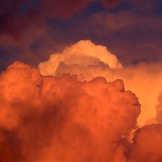 colored photos flowers orange fire in the sky. Orange Aesthetic, Rainbow Aesthetic, Aesthetic Colors, Aesthetic Vintage, Aesthetic Photo, Aesthetic Pictures, Aesthetic Dark, Aesthetic Pastel, Aesthetic Grunge