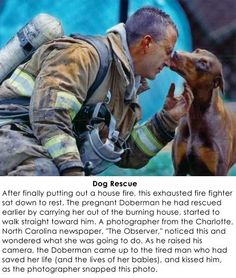 Another example of why I love dogs.  They show their appreciation when it is not expected.