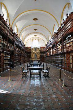 Biblioteca Palafoxiana de Puebla ~ #Library #Puebla ESTE ES UNO DE LOS LUGARES QUE MAS ME IMPRESIONA EN PUEBLA, BUENO PARA QUE HACERME TONTA TODO EN PUEBLA ES IMPRESIONANTE