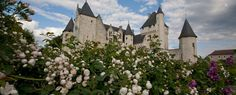 Enchanting medieval castle and gardens in the Loire Valley. Between Tours and Chinon and close to Fontevraud - Château du Rivau. Loire Castles, Destination Wedding, Wedding Venues, Saumur, Loire Valley, Medieval Castle, South Of France, Beautiful Places To Visit, France Travel