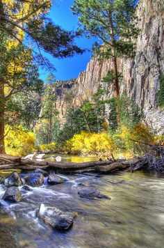 Cimarron Canyon State Park - This State Park is located near the city of Eagle Nest, New Mexico. This region is great for camping, hiking, pickniking, wildlife viewing, fishing and more. TravelingWarrior.com knows that if you love nature than this is the perfect place for you. (https://www.facebook.com/TravelingWarrior) #StatePark #attractions #NewMexico