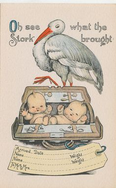 #7648 1908 POSTCARD STORK BABY BIRTH ANNOUNCEMENT TWINS