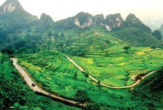 Amazing - Vietnam