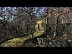 Land of Oz, Beech Mountain - NC | Roadtrippers