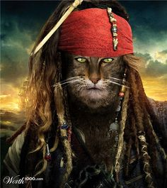 Anthropomorphic captain Cat Sparrow by memarCH place entry in Critter Pirates 4 I Love Cats, Crazy Cats, Cool Cats, Cat People, Beautiful Cats, Beautiful Pictures, Pet Portraits, Cat Art, Cats And Kittens