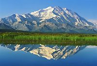 20, 3020+ ft. Mt. McKinley (locally called Denali) reflects in a tundra pond, Denali National Park, Alaska.