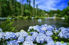 12 cidades legais para conhecer no Rio Grande do Sul - Dicas de viagem