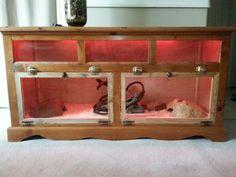 DIY Snake Enclosure