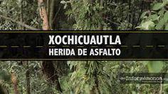 XOCHICUAUTLA HERIDA DE ASFALTO: testimonios de comuneros que defienden el bosque, el agua y el territorio