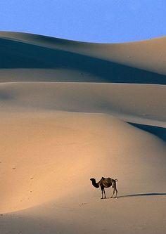 9 Ideas De Desert Fotografia Fotos Paisajes Deserticos