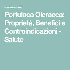 Portulaca Oleracea: Proprietà, Benefici e Controindicazioni - Salute