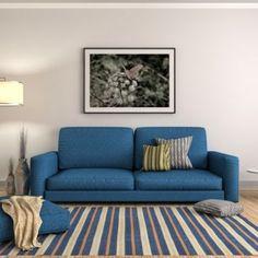 Blue Living Room Ideas – Terrys