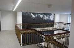 Tacita Dean al Documenta Kassel