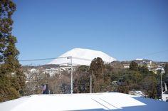 朝起きたら、快晴で温かく、気持ちのよい朝だななんて思って外を見てみたら、  あたりが真っ白になってた。  どうやら夜中に雪が降ったらしい。