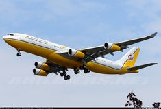 Royal Brunei Airlines V8-BKH Airbus A340-212 aircraft picture