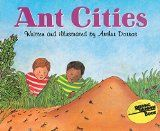 Learning about ant habitats - Gift of Curiosity