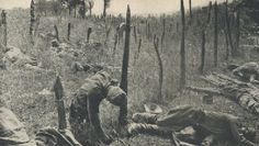 September 24, 1916 - Brusilov Offensive Ends.  Pictured - Dead Russian soldiers hang on barbed wire after a failed attack.