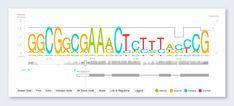 gene slider data visualization