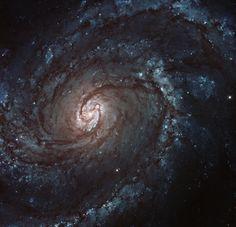 Uma galáxia majestosa  Cerca de 100 bilhões de estrelas compõem os braços desta galáxia em forma de espiral.