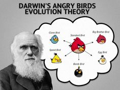 Darwin's Angry Birds Evolution Theory