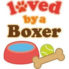 Certainly loved by a Boxer!