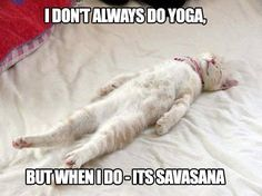 ❤ Share if shavasana is your favorite yoga pose. Yoga Inspiration on FB and IG