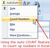 How to Use the AutoCOUNT Function in Excel: Excel's AutoCOUNT Function