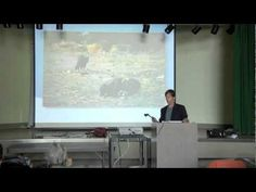 Land Use Inefficiencies: How Food choices Are Causing World Hunger - YouTube