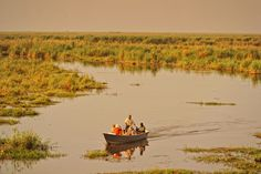 The astounding beauty of the Chobe National Park is something everyone should experience. #Botswana #Africa #travel