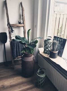 Own Home, My Dream Home, House Plants, Ladder Decor, Lanterns, Sweet Home, Living Room, Vintage, Ramen