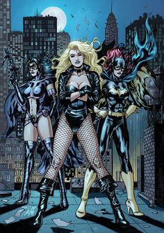 Black Canary, Batgirl, & Huntress