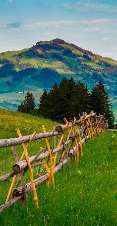 Appenzeller, Switzerland