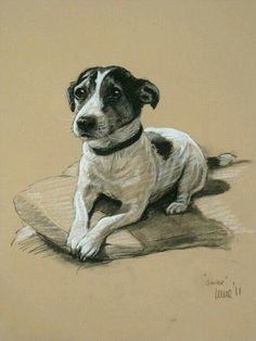 Jack Russell Terrier cute dog LE fine art print 'Smiler' from an original chalk and charcoal sketch Perros Jack Russell, Jack Russell Dogs, Rat Terriers, Terrier Dogs, Jack Russell Terrier, Animal Paintings, Animal Drawings, Basset Dachshund, Gravure Illustration