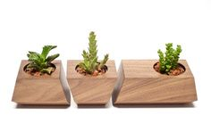 Revolution Design House Revolution Design House's handcrafted Boxcar planter in solid walnut wood. | 2Modern Furniture & Lighting