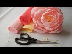 Crepe Paper Flower | How to make Peony flower Tutorial - YouTube