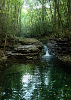 VA The Devil's Bathtub, Fort Blackmore --For a breathtaking break from reality, all you need is a 1.5 mile hike on the Devil's Fork Loop Trail in the Jefferson National Forest. It's a tricky path with streams and slippery rocks, but once you reach Devil's Bathtub – a pool of nearly crystal green water at the base of a stone slide – you will know it was well worth it.