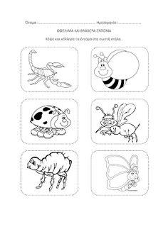 dreamskindergarten Το νηπιαγωγείο που ονειρεύομαι !: Φύλλα εργασίας για τα έντομα Spring Crafts, Insects, Snoopy, Comics, Blog, Fictional Characters, February, Education, Art