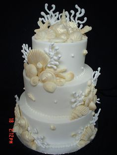 Shells...shells...more shells!!! - I think this is my month for shells cakes..I think I made like 4 already and I have another one soon..Buttercream finish...Royal icing coral..Chocolate shells..Enjoy!!! Edna