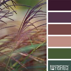Color Palette, Grass, Purple, Pink, Green