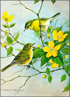 Symphony Of Love: Inspiring Birds quotes /beautiful Birds painting/Basil Ede Painting Pretty Birds, Beautiful Birds, Beautiful Pictures, Realistic Oil Painting, Motifs Animal, Bird Illustration, Bird Drawings, Bird Pictures, Watercolor Bird