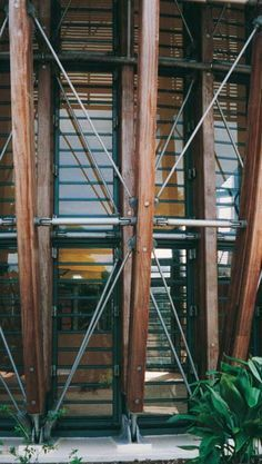renzo piano marie tjibaou cultural center connections - Google Search