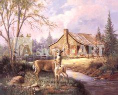 Deer Near Cabin