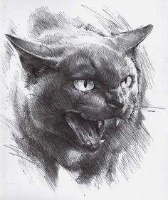 Рисунки художника Daniel Grzeszkiewicz