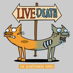 The Schrödinger Series! - NeatoShop
