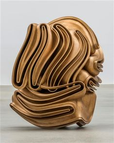 foreign body by tony cragg