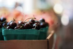 """Extracted from black cherries (Prunus serotina), black cherry juice is typically used as a remedy for health conditions like gout and arthritis. Rich in antioxidants, including anthocyanins, black cherry juice is purported to reduce inflammation, a biological process closely linked to these conditions."""" Nov 6, 2017"""
