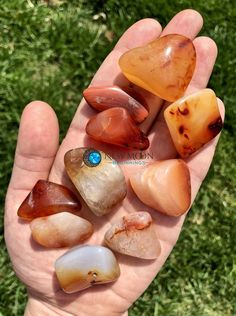 Carnelian Stone   New Moon Beginnings Rock Hunting, In Ancient Times, Tumbled Stones, Rocks And Minerals, Carnelian, Fossils, Crystal Healing, Natural Stones, Gemstones