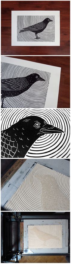 Crow by Meriç Karabulut, via Behance