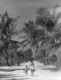 Florida Memory - 1948 Elizabeth Fletcher and Paul Fletcher, Jr. walk down island road to beach for shell collecting - Sanibel Island, Florida Florida Girl, Old Florida, Vintage Florida, Florida Travel, Florida Woman, Clearwater Florida, Sarasota Florida, Florida Beaches, Kissimmee Florida
